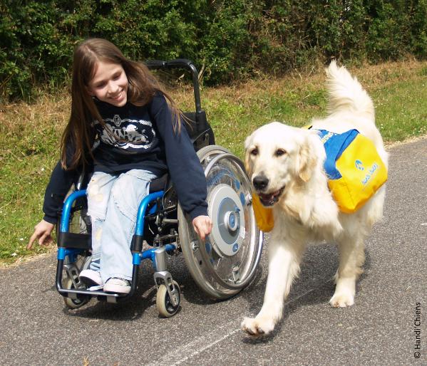 Engagement social Everad 2019 : Everad et Handi'chiens