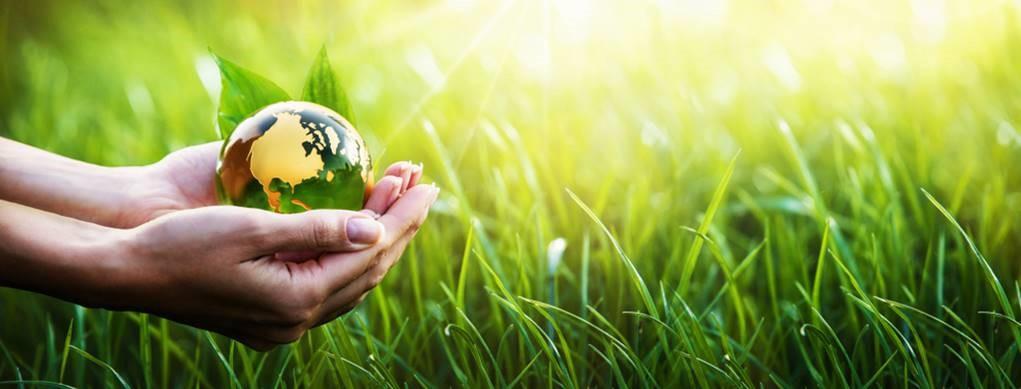 Everad® bringt Everad® TAC 6005.0 auf den Markt, einen lösungsmittelfreien Neopren-Kontaktkleber für Hochleistungsverbindungen, der Mensch und Umwelt schont